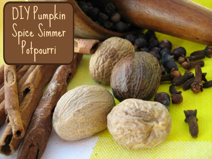DIY Pumpkin Spice Simmer Potpourri